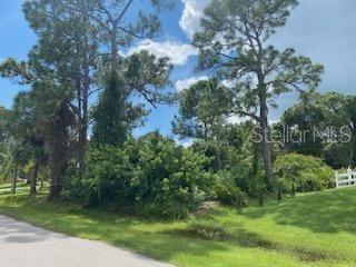 Photo of 3133 LICH STREET, PORT CHARLOTTE, FL 33980 (MLS # D6121492)
