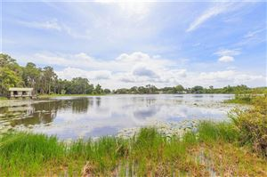 Photo of 16105 MCGLAMERY ROAD, ODESSA, FL 33556 (MLS # T3185498)