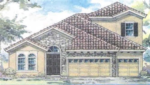 Main image for 11238 HAWKS FERN DRIVE, RIVERVIEW, FL  33569. Photo 1 of 11