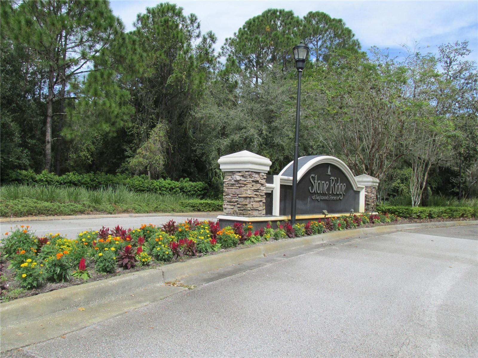 8171 STONE VIEW DRIVE, Tampa, FL 33647 - #: T3333509