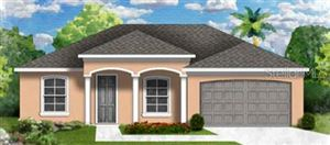 Photo of 1613 LADY FERN TRAIL, DELAND, FL 32720 (MLS # O5818519)