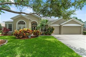 Photo of 4749 STONEVIEW CIRCLE, OLDSMAR, FL 34677 (MLS # U8048519)