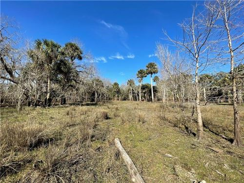 Photo of 1247 GEE WHIZ DRIVE, OSTEEN, FL 32764 (MLS # V4917520)