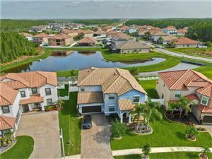 Photo of 19083 LUTTERWORTH COURT, LAND O LAKES, FL 34638 (MLS # T3196540)