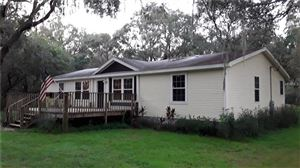 Photo of 12608 HAYES CLAN ROAD, RIVERVIEW, FL 33579 (MLS # T3131556)