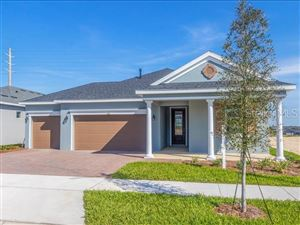 Photo of 184 SILVER MAPLE ROAD, GROVELAND, FL 34736 (MLS # O5791558)