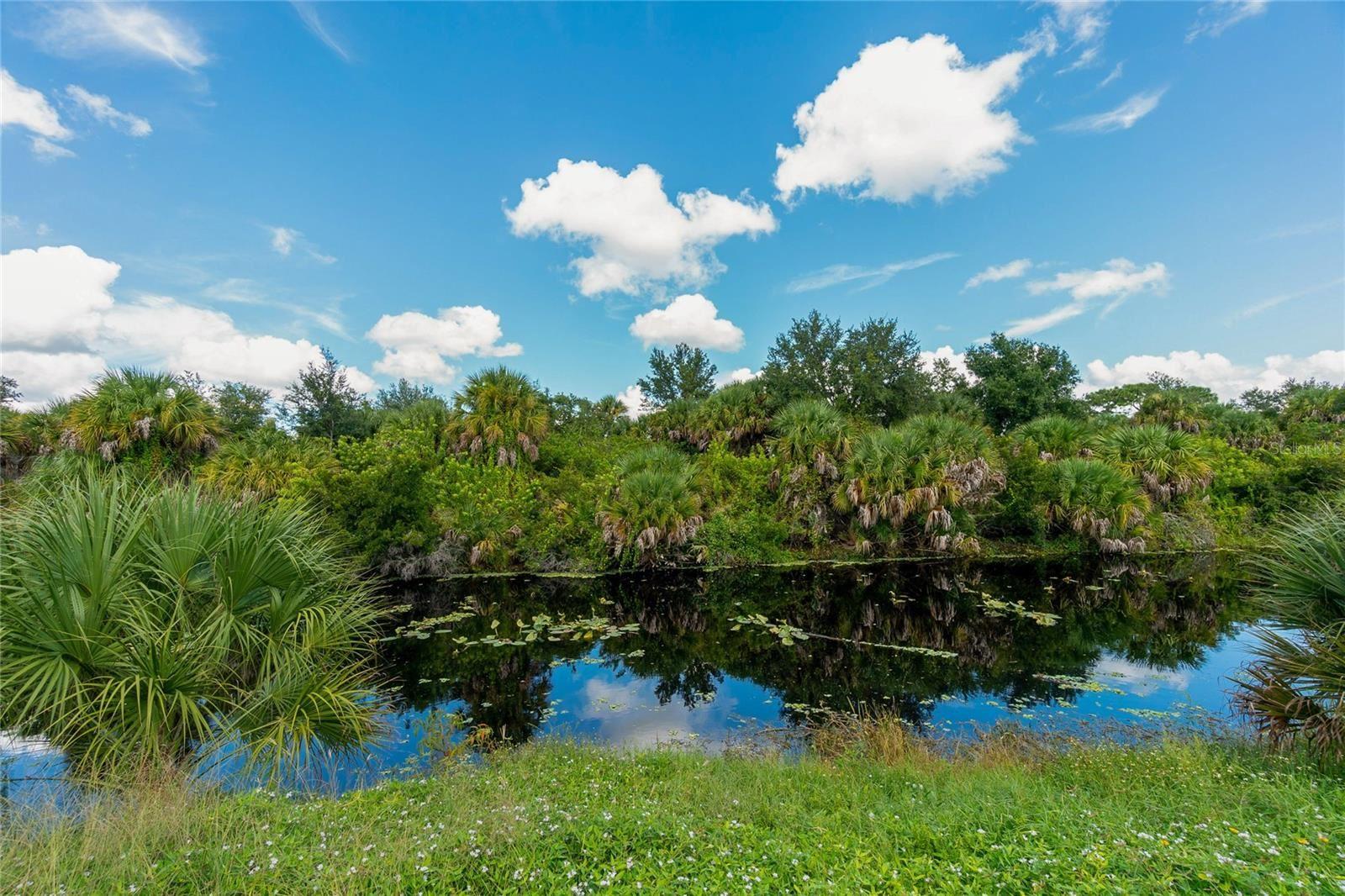 Photo of 10436 EUSTON AVENUE, ENGLEWOOD, FL 34224 (MLS # D6121559)