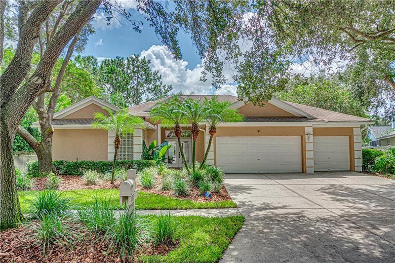 17313 LOCKWOOD RIDGE DRIVE, Tampa, FL 33647 - #: T3263559
