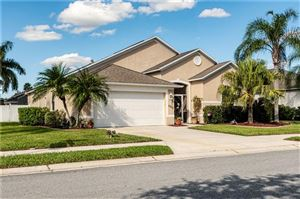 Photo of 6202 IKES CABIN COURT, PALMETTO, FL 34221 (MLS # A4448561)