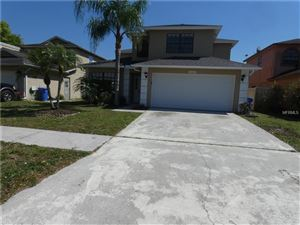 Photo of 6104 SILKDALE COURT, TAMPA, FL 33625 (MLS # T3164563)