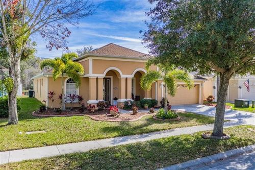 Photo of 10536 SKY FLOWER COURT, LAND O LAKES, FL 34638 (MLS # T3285563)