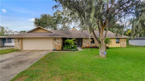 Photo of 15831 TOWER VIEW DRIVE, CLERMONT, FL 34711 (MLS # T3335564)