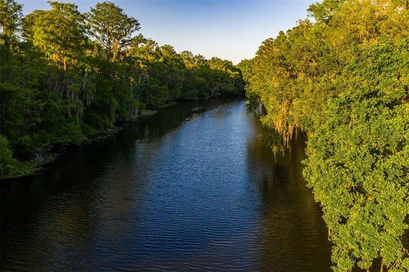 11943 RIVERHILLS DRIVE, Temple Terrace, FL 33617 - MLS#: T3302566