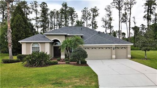 Photo of 2933 BIG CYPRESS WAY, WESLEY CHAPEL, FL 33544 (MLS # T3300570)