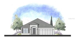 Main image for 803 FILLMORE COURT, DAVENPORT, FL  33837. Photo 1 of 13