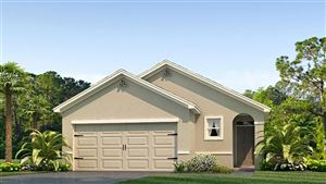 Main image for 8074 PELICAN REED CIRCLE, WESLEY CHAPEL,FL33545. Photo 1 of 16
