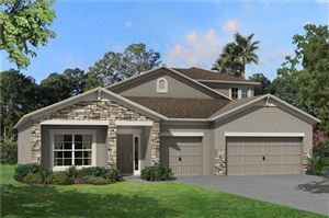 Photo of 7462 SWEETER TIDE TRAIL, WESLEY CHAPEL, FL 33545 (MLS # T3204578)