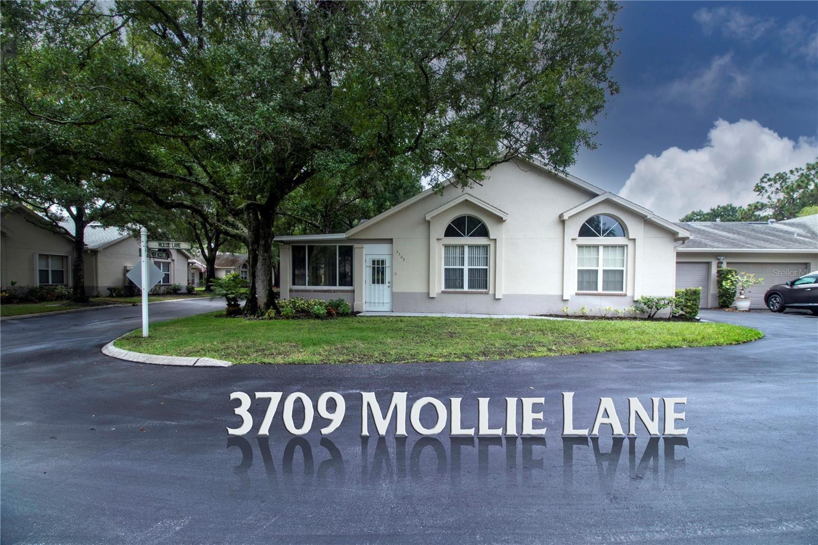3709 MOLLIE LANE #3709, Ruskin, FL 33573 - #: T3321587