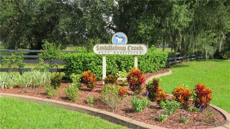 Photo of 30106 SADDLEBAG TRAIL, MYAKKA CITY, FL 34251 (MLS # A4449591)