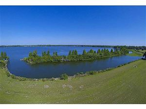 Main image for 12102 STONELAKE RANCH LOT 38 BOULEVARD, THONOTOSASSA, FL  33592. Photo 1 of 25