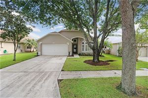 Photo of 10311 SPRINGROSE DRIVE, TAMPA, FL 33626 (MLS # T3199595)