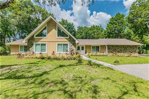 Photo of 19410 PINE TREE ROAD, ODESSA, FL 33556 (MLS # T3182598)