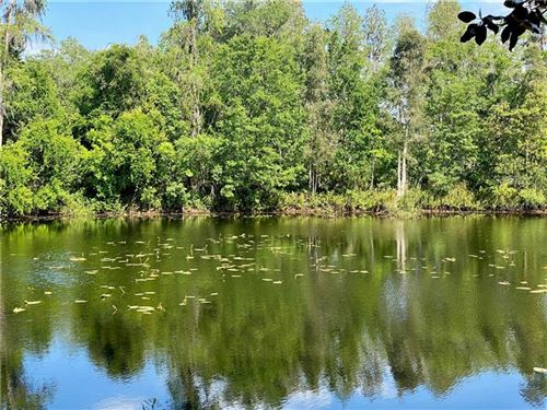 Main image for 3962 COVE LAKE PLACE, LAND O LAKES, FL  34639. Photo 1 of 59