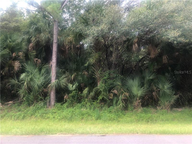 Photo of SHABONNE LANE, NORTH PORT, FL 34286 (MLS # N6111604)