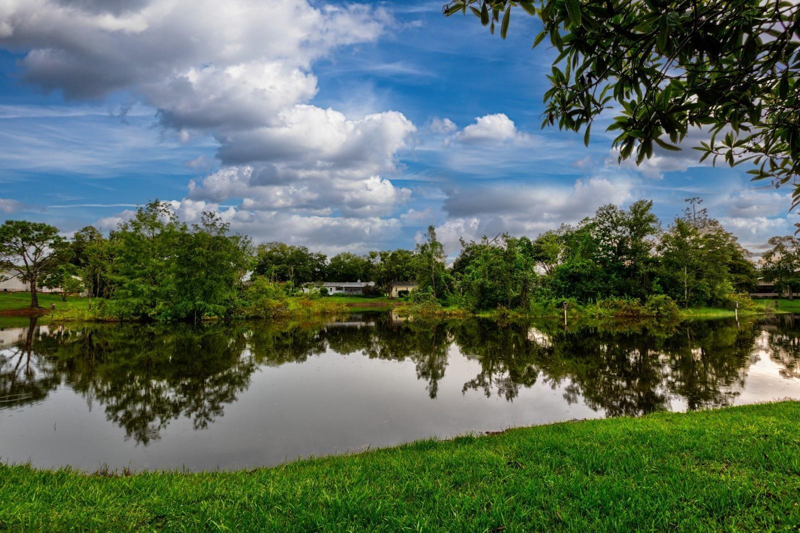 16 EASTER ROSS COURT, Leesburg, FL 34788 - #: OM623616