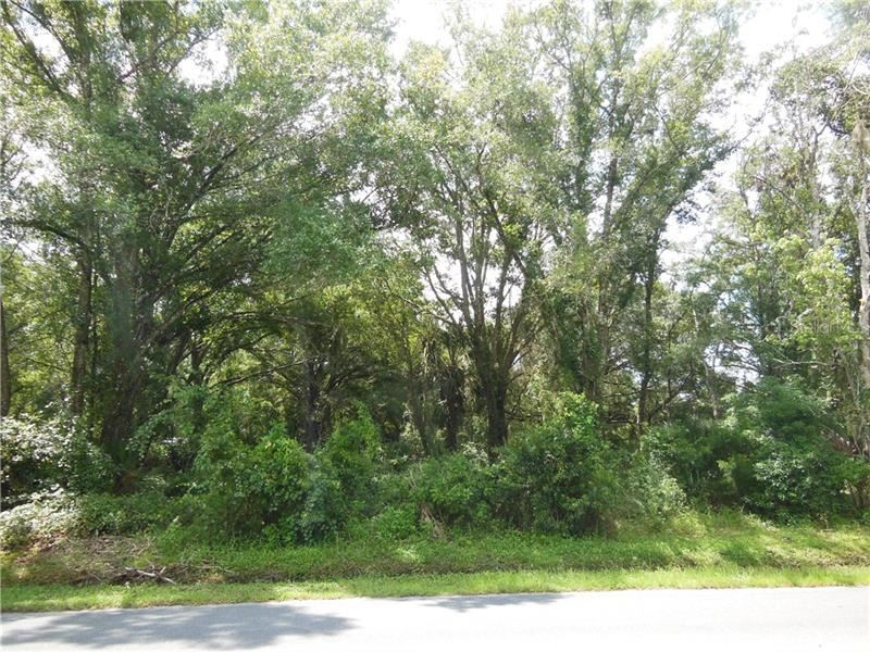 BEARLE ROAD, Orlando, FL 32828 - #: O5805618