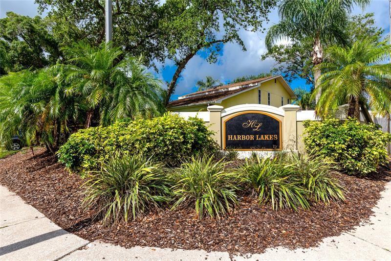 101 WINDING WILLOW DRIVE, Palm Harbor, FL 34683 - #: W7833622