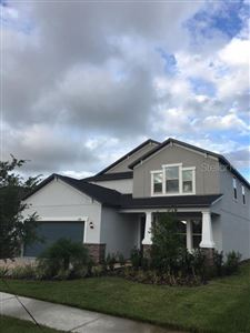 Photo of 4380 SLIPSTREAM DRIVE, LAND O LAKES, FL 34638 (MLS # T3173627)