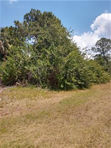 Photo of 166 ANTIS DRIVE, ROTONDA WEST, FL 33947 (MLS # C7404630)
