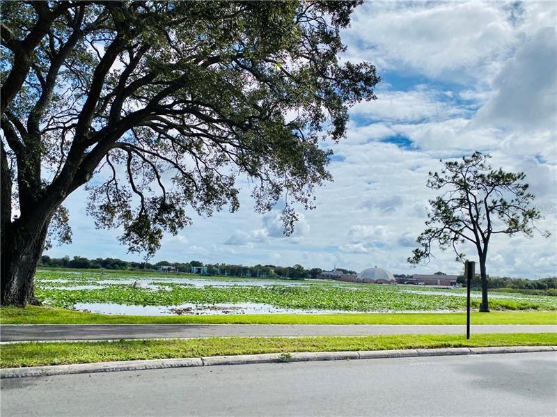 1202 W LAKE PARKER DRIVE, Lakeland, FL 33805 - #: L4919634