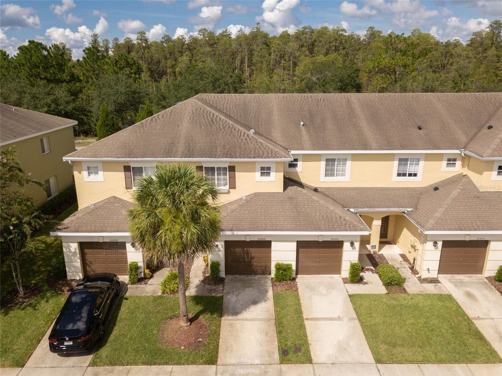 20428 NEEDLETREE DRIVE, Tampa, FL 33647 - MLS#: T3323635