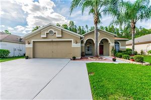 Photo of 1501 BAYTHORN DRIVE, WESLEY CHAPEL, FL 33543 (MLS # T3169640)