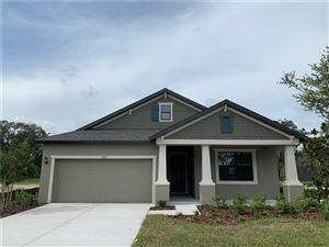 Main image for 11209 PADDOCK MANOR AVENUE, RIVERVIEW,FL33569. Photo 1 of 1