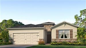 Photo of 31396 TANSY BEND, WESLEY CHAPEL, FL 33545 (MLS # T3160664)