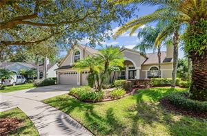 Photo of 10160 WHISPER POINTE DRIVE, TAMPA, FL 33647 (MLS # T3206667)