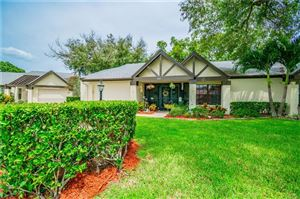 Photo of 915 HICKORY HILL COURT, PALM HARBOR, FL 34684 (MLS # T3193669)