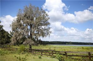 Photo of 2461 FARI FORTUNE LANE, BROOKSVILLE, FL 34602 (MLS # W7808674)