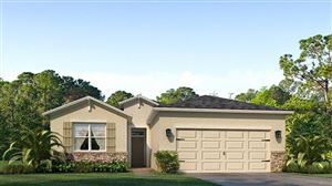 Photo of 31428 TANSY BEND, WESLEY CHAPEL, FL 33545 (MLS # T3175684)