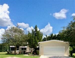 Photo of 2623 FIDDLEWOOD COURT #867, ZELLWOOD, FL 32798 (MLS # O5812693)