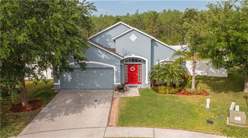 Photo of 3800 RED ASH COURT, KISSIMMEE, FL 34744 (MLS # O5937694)