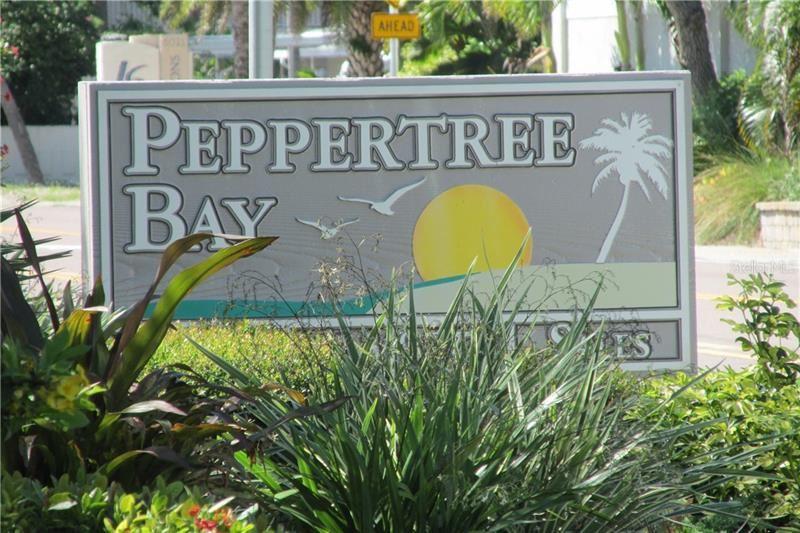 Photo of 6043 E PEPPERTREE WAY #223, SARASOTA, FL 34242 (MLS # A4471706)