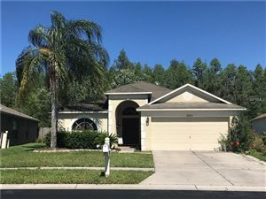 Photo of 31211 WRENCREST DRIVE, WESLEY CHAPEL, FL 33543 (MLS # T3169710)