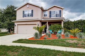 Main image for 6053 EVERLASTING PLACE, LAND O LAKES, FL  34639. Photo 1 of 46