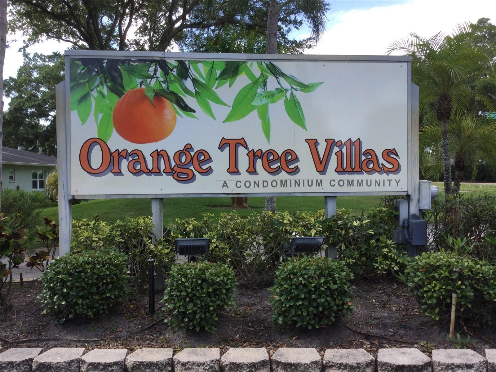 1150 ORANGE TREE CIRCLE E #D, Palm Harbor, FL 34684 - #: U8131719