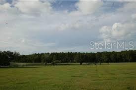 Photo of 0 SE 159TH LANE #38, SUMMERFIELD, FL 34491 (MLS # OM617720)