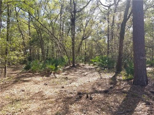 Photo of 7610 W COUNTY LINE ROAD, ODESSA, FL 33556 (MLS # T3296724)